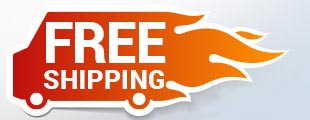 Free shipping on all orders over $50 when you buy auto parts online.