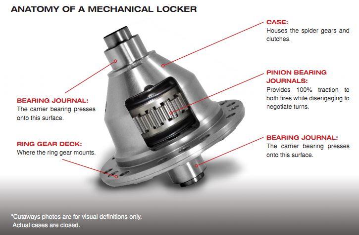 Grizzly: Mechanical Locker Anatomy