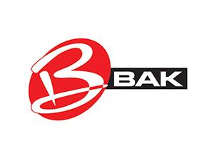 BAK Car Parts