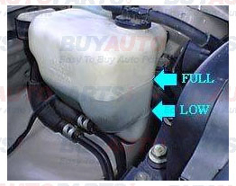 Check and Fill Coolant