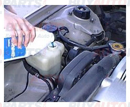 How To Check and Fill Coolant