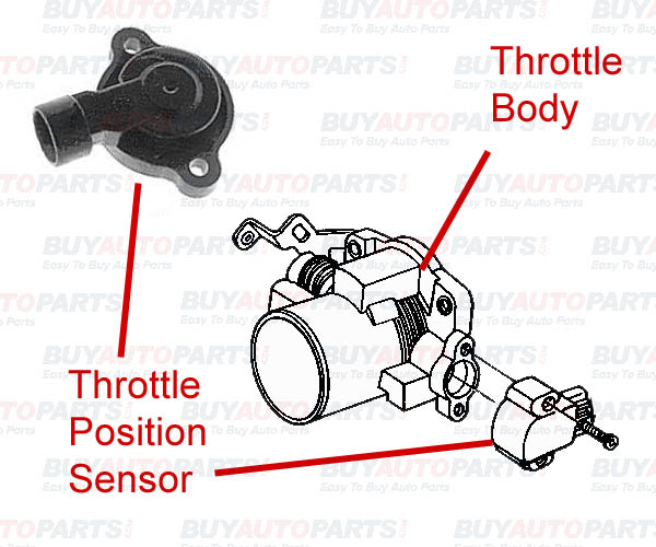Throttle Position Sensor Location Ford Throttle Get Free